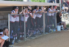"<div class=""source"">photo/JOSH CLAYWELL</div><div class=""image-desc"">The Taylor County dugout erupts after a play during Thursday's 20th District Softball Tournament championship game against Marion County.</div><div class=""buy-pic""><a href=""/photo_select/67018"">Buy this photo</a></div>"