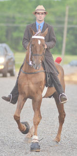 Wes Mouser of Campbellsville wins first prize in a class at the Tommie Johns horse show.
