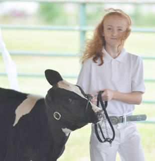 Janice Jones of Marion County participates in the junior showmanship competition.