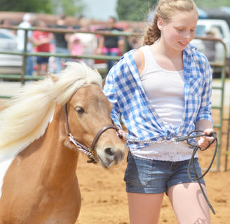 Breanna Marlow walks her horse for the judges.