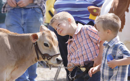 Daniel Carrender, 5, and his brother, Ben, 3, take a closer look at their Jersey calf, Sunny, before participating in the Open Dairy Show on Saturday.