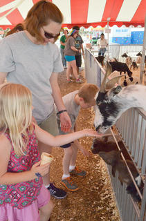From left, Courtney and Collin Moore of Campbellsville pet goats at the petting zoo with their mother, Sarah Moore.