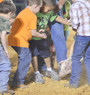 Children race to catch this pig in the fair's first pig catching contest.