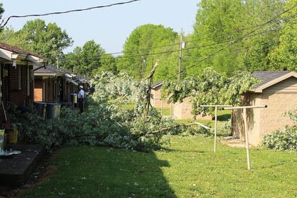 Some residents on Bell Court were temporarily without electricity after falling tree branches snapped power lines during Thursday morning's storm.