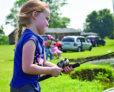 Allie Cox, 6, of Taylor County, concentrates as she slowly reels in one of her catches during the event.