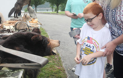 Hunter Embry, 7, of Campbellsville, gets maybe a little too up close and personal with a bear pelt on display presented by the United Trappers of Kentucky Saturday at the Kids Outdoor Day at Green River Lake State Park.