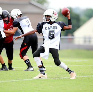 Taylor County quarterback Jaquon Coulter looks to pass against Washington County Saturday.