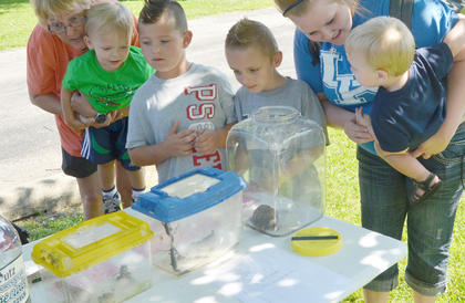 Children look at turtles, frogs and snakes found near Green River Lake.