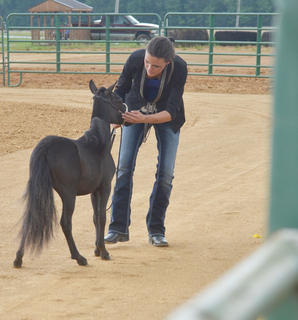 Samantha Clark of Campbellsville shows her miniature horse in this year's show.