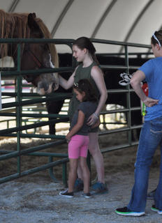 Ali Simpson, left, and Bella Tarter pet a horse at the petting zoo Wednesday during the Taylor County Fair.