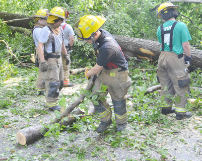Campbellsville Fire & Rescue personnel spent several hours Thursday morning working to remove several trees that blocked the entrance to the Forest Hills Subdivision.