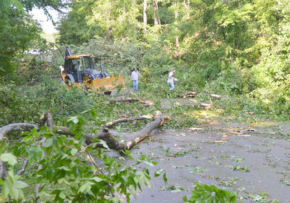 Atmos Energy and Campbellsville Fire & Rescue personnel spent several hours Thursday morning working to remove several trees that blocked the entrance to the Forest Hills Subdivision.