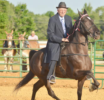 Robert Neagle of Campbellsville participates in this year's Tommie Johns Memorial Championship Horse show at the fair on Saturday.