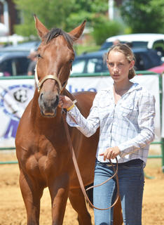 Kelsey Woodrum stands as her horse Lil' Boy is judged in the youth horse show at the fair on Saturday.