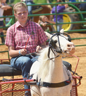 Gabriel Sharp of Campbellsville participates in the youth horse show at the fair on Saturday.